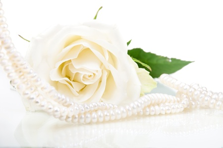 freshwater pearl: Closeup of river pearls with white rose Stock Photo