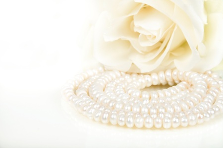Closeup of river pearls with white rose Stock Photo