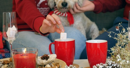 Closeup on womans hand taking out marshmallow from cup of hot chocolate
