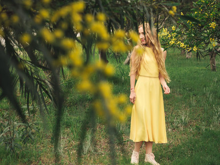 Young beautiful smiling woman with long blond hair in yellow dress standing in spring Australian Golden wattle trees garden. Zdjęcie Seryjne