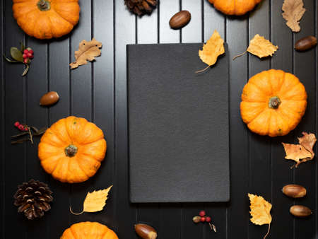 Top view on closed black notepad with decorative pumpkins and autumn leaves, berries, acorns, cones. Traditional Halloween decor.