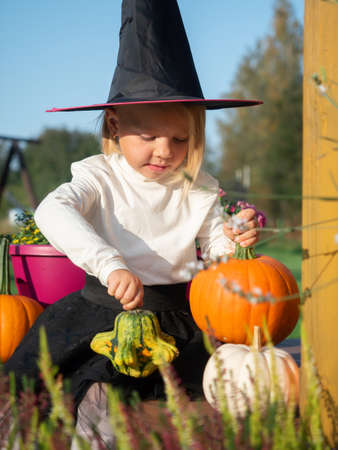 3 years old girl in witch costume playing with pumpkins outdoors.