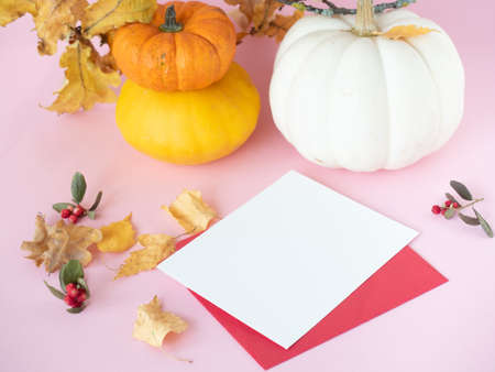 Empty white paper on red envelope, autumn leaves, dry berries and decorative pumpkins on pink background Stok Fotoğraf
