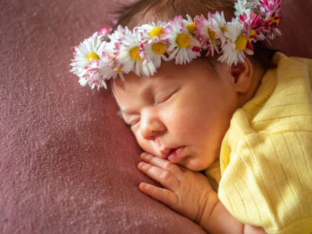 Adorable 8 days old newborn baby girl sleeping in daisy wreath yellow knitted dress on a soft plaid. Portrait studio image Stok Fotoğraf