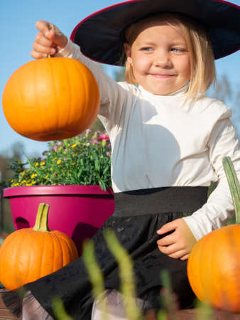 3 years old girl in witch costume holding pumpkin in hand and looking at it