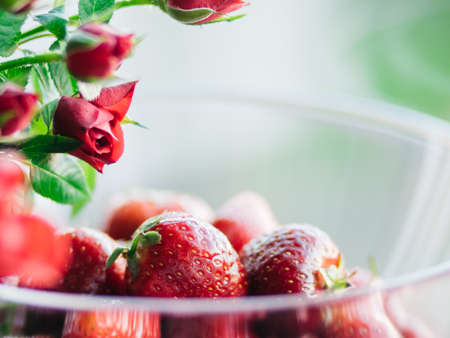 Extreme closeup of fresh sweet strawberries in transparent bowl with branch with red roses buds above
