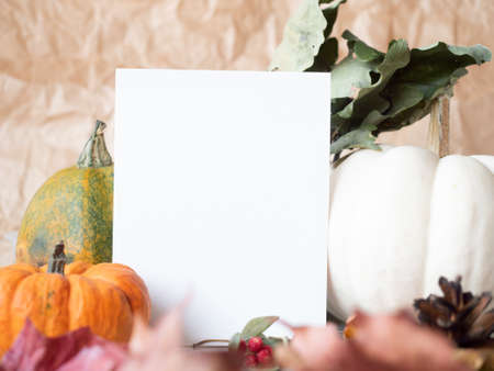 White paper on autumn background with dry leaves berries and decorative pumpkins.
