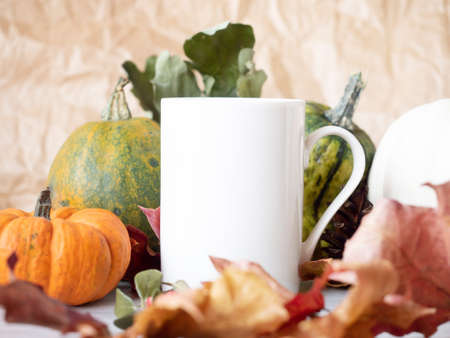 Tea cup near decorative pumpkin on autumn background with dry leaves.