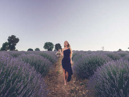 Young blonde caucasian woman in long dark blue dress walking barefoot in lavender field holding shoes in hands