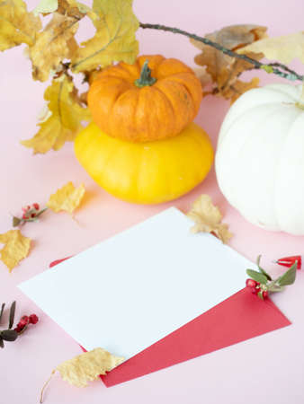 Empty white paper on red envelope, autumn leaves, dry berries and decorative pumpkins on pink background Zdjęcie Seryjne