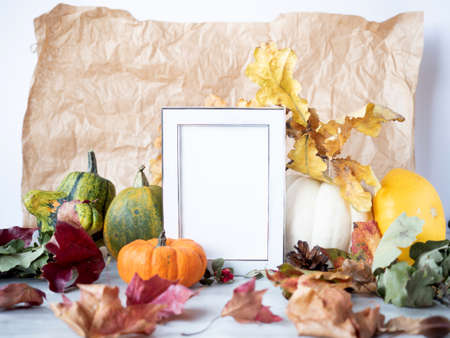 Empty white photo frame on autumn background with dry leaves berries and decorative pumpkins. Zdjęcie Seryjne