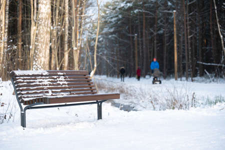 Empty bench in snowy forest. Walking people on background out of focus. 写真素材