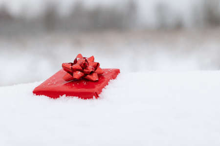 Closeup view of red gift box lying in snow copy space. Christmas and valentines day holidays 写真素材