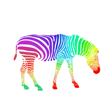 Hand drawn sketch of rainbow colored zebra isolated on white background.  イラスト・ベクター素材