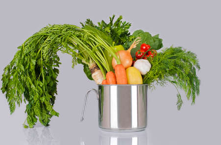 variety of fresh vegetables in a metal pot, studio isolated on a gray background, horizontal