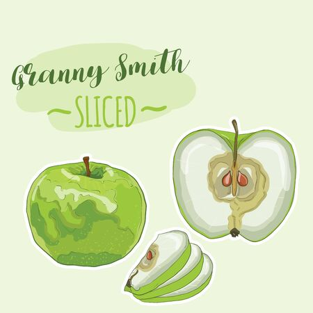 Hand Drawn Full Color Colorful Realistic Green Apple Granny Smith Fruit Sliced Set