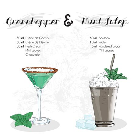 Hand Drawn Colorful Grasshopper and Mint Julep Cocktail Drink Ingredients Recipe