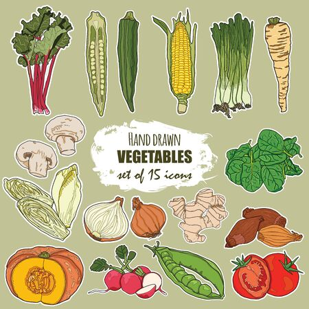 Hand drawn vegetables set of 15 icons Vetores