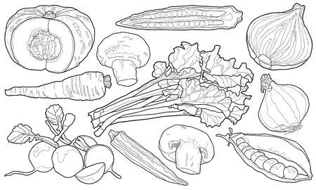 Sketchy Hand Drawn Vegetables
