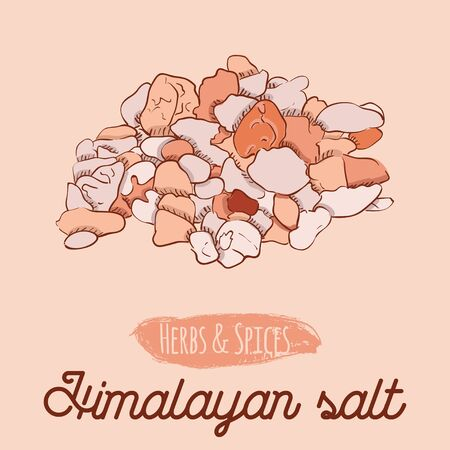 Hand Drawn Colorful Herbs and Spices Pink Himalayan Salt Vettoriali