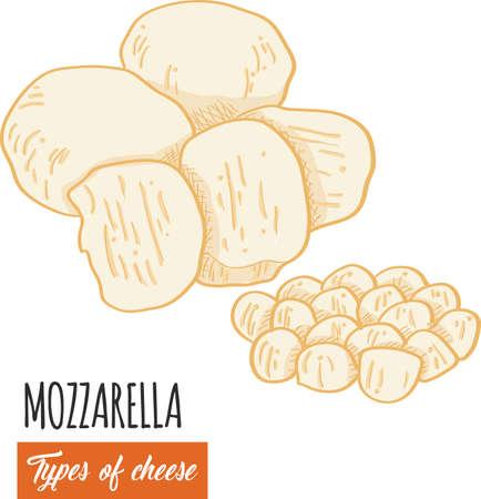 Hand drawn colorful Mozzarella cheese