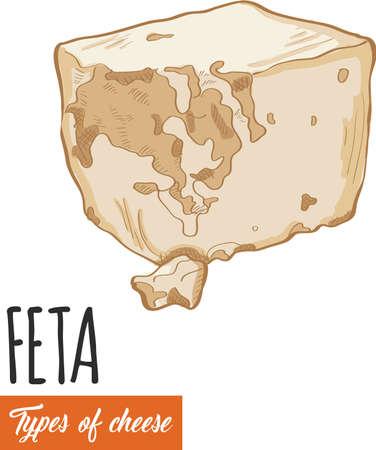 Hand drawn colorful Feta cheese Illustration
