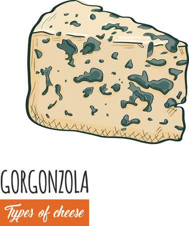 Hand drawn colorful Gorgonzola cheese Illustration