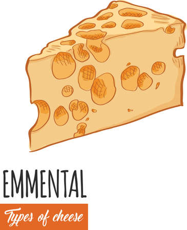 Hand drawn colorful Emmental cheese Illustration
