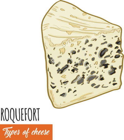 Hand drawn colorful Roquefort cheese Illustration