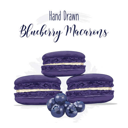 Hand drawn colorful french Macarons with Blueberry flavor