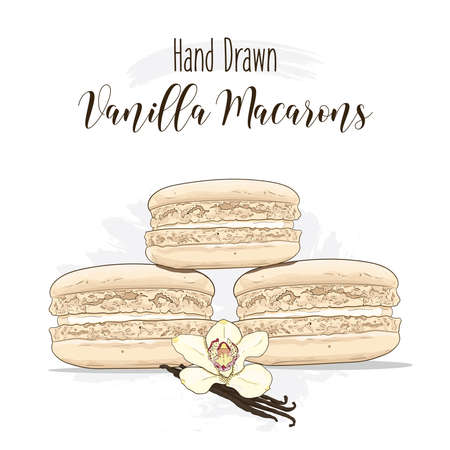 Hand drawn colorful french Macarons with Vanilla flavor Illustration
