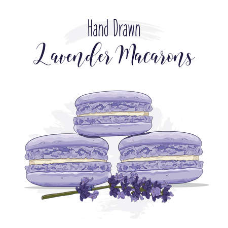 Hand drawn colorful french Macarons with Lavender flavor Illustration