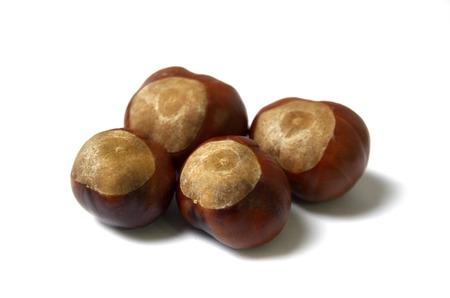 Horse Chestnuts Isolated On White Background photo