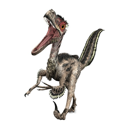 Dinosaur Velociraptor Stock Photo - 14714498