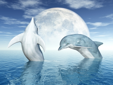 moon fish: Jumping Dolphins Stock Photo