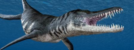 saurian: Liopleurodon