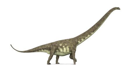 恐竜マメンチサウルス