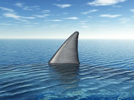 Büyük Beyaz Köpekbalığı Fin Stock Photo
