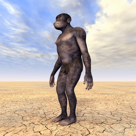 Homo Habilis - Human Evolution Stock Photo - 17041492