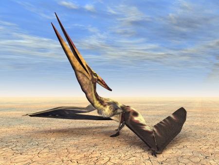 hugely: The Pterosaur Pteranodon Stock Photo
