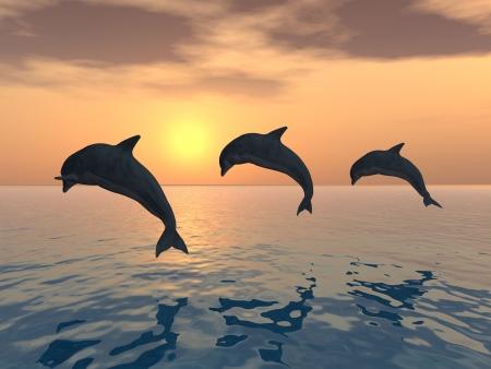 dauphin: Les dauphins sautant Banque d'images