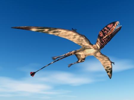 enormously: Dimorphodon