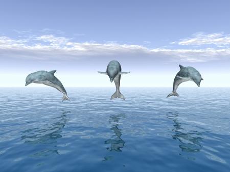 Springen Dolfijnen