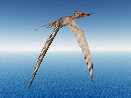 dangerously: Pterosaur Rhamphorhynchus