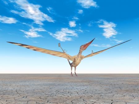 pterosaur: Pterosaur Rhamphorhynchus