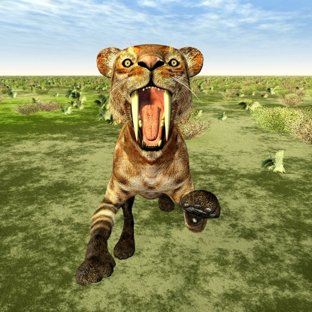 Saber-Toothed Cat Smilodon Stock Photo - 19223382