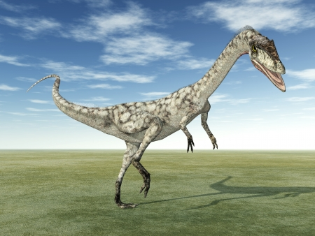 enormously: Dinosaur Coelophysis
