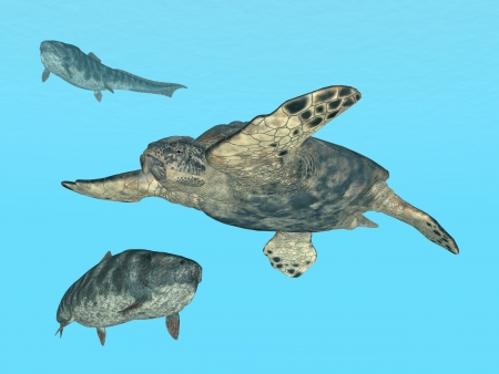 Giant Sea Turtle Archelon and Prehistoric Fish Dunkleosteus photo
