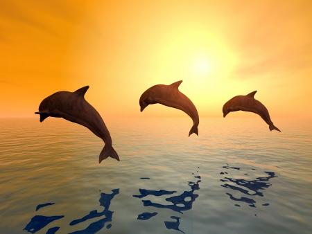 Dolphins Jumping Foto de archivo