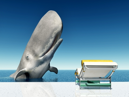 Holiday Experience with Sperm Whale and Deck Chair photo